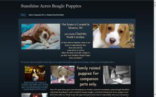 Sunshine Acres Beagles