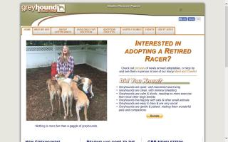 Greyhound Rescue & Rehab - GRR