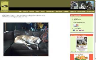 Greyhound Rescue Austin - GRA