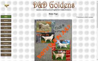 D&D Goldens