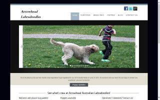 Arrowhead Park Labradoodles