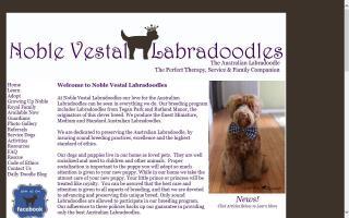 Noble Vestal Labradoodles