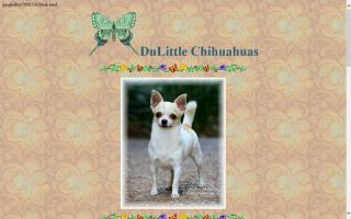 Dulittle Chihuahuas