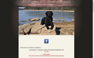 Ashland Labradors