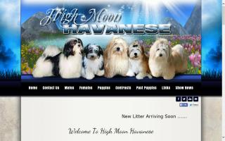 High Moon Havanese
