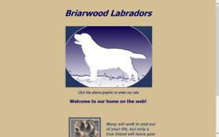 Briarwood Labradors