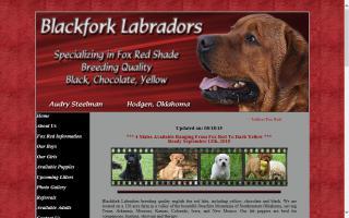 Blackfork Labradors