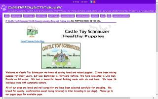 Castle Toy Schnauzer