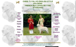 CHRIS Ti English Golden Retrievers