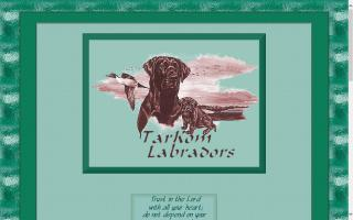 TarKom Labradors
