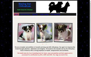 Blazing Star Chihuahuas