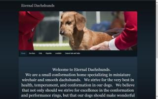 Eternal Dachshunds