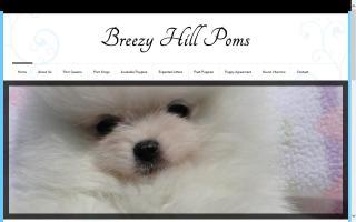 Breezy Hill Poms