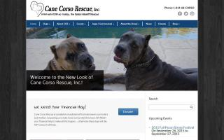 Cane Corso Rescue Committee