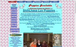 ShihLhasa Luv Puppies