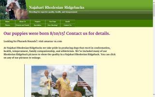 Najahari Rhodesian Ridgebacks & Pharaoh Hounds