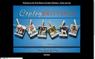 Copley Brittanys
