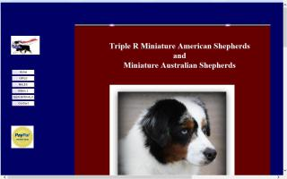 Triple R Miniature Australian Shepherds