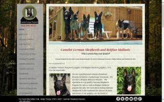 Camelot German Shepherds