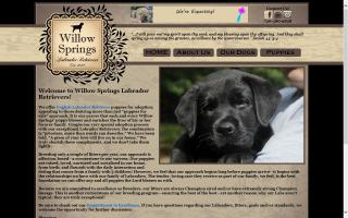 Willow Springs Labradors