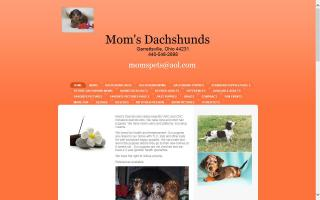 Mom's Dachshunds / Danielle's Photography