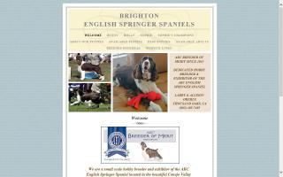 Brighton English Springer Spaniels