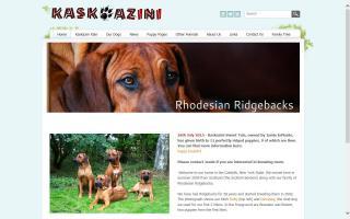 Kaskazini Rhodesian Ridgebacks