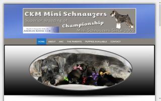CKM Mini Schnauzers