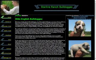 Starline Ranch Bulldogges