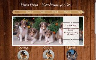 Cook's Collies