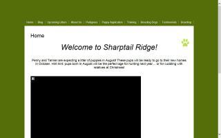 Sharptail Ridge Golden Retrievers