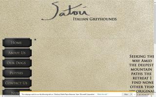 Satori Italian Greyhounds