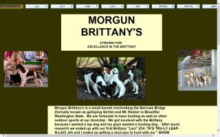 Morgun Brittanys
