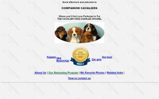Companion Cavaliers