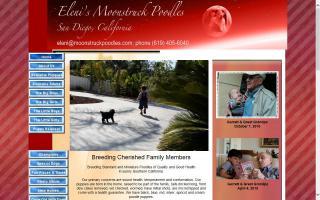 Eleni's Moonstruck Poodles