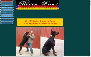 Britton Farms Dobermans