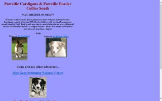 Pawcific Cardigans / Pawcific Border Collies South / Pawcific Handling Services