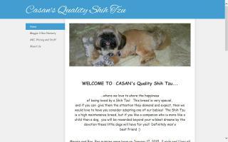 CASAN's Quality Shih Tzu