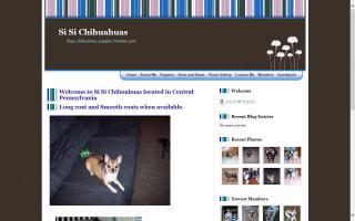 Si Si Chihuahuas