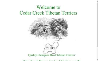 Cedar Creek Tibetan Terriers