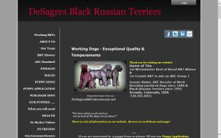 DeSagres Black Russian Terriers