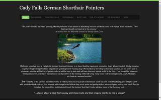 Cady Falls German Shorthair Pointers