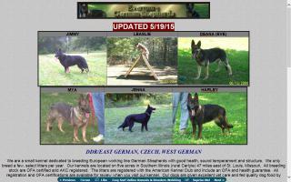 Evermore German Shepherds