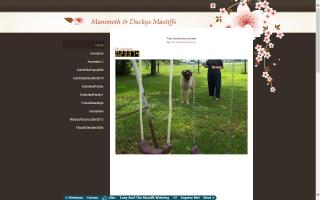 Mammoth Mastiffs & Ducky's Mastiffs