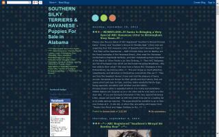 Southern Silky Terriers & Havanese