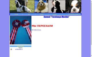 Tsvetnaya Mechta
