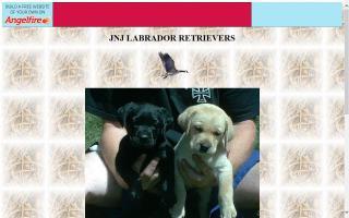 JNJ Labrador Retrievers