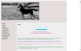 Chastains' Siberian Huskies
