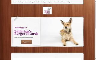 Ballerine's Berger Picards