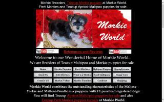 Morkie World